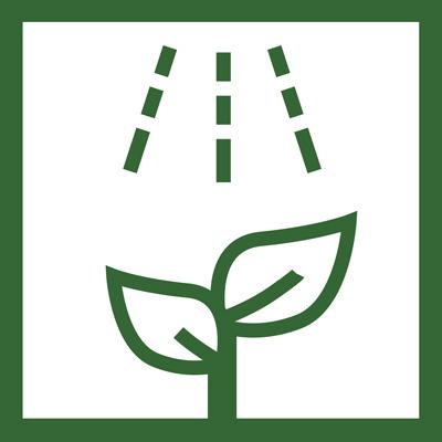 Aplicacion foliar