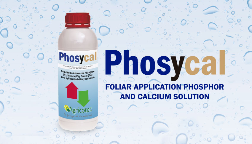 phosycal garrafas productos