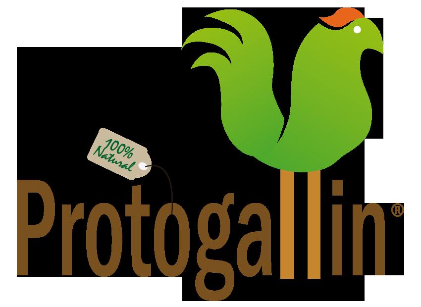 Protogallin